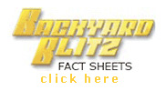 Backyard Blitz Fact Sheets