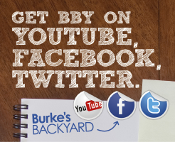 Get BBY on YouTube, Facebook, Twitter.
