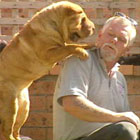 Shar Pei with man