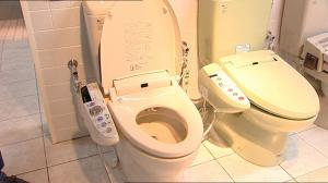 Japanese Toilets Burke S Backyard