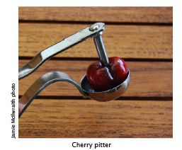 cherry pitter web