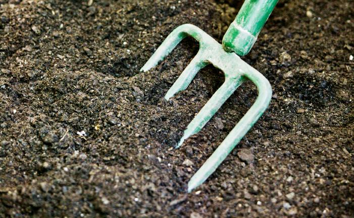 Adding Organic Matter to Soil
