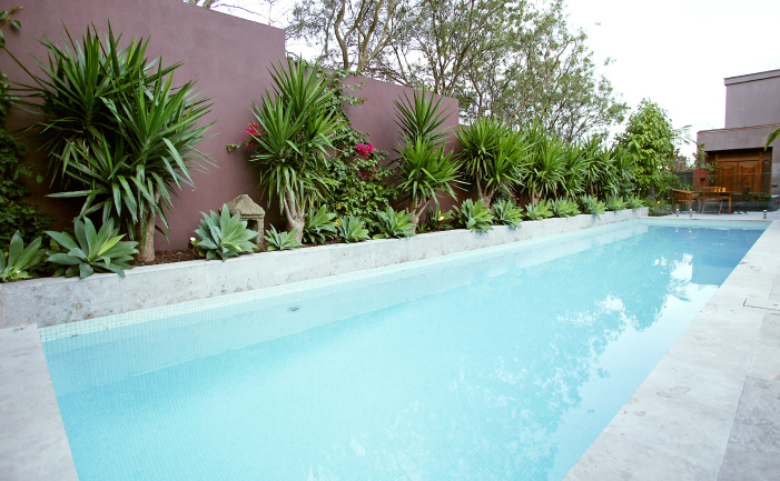 Plunging into pools burke 39 s backyard Best plants for swimming pool landscaping