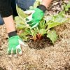 mulching veges