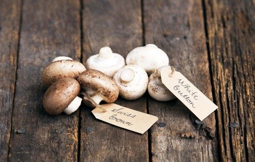 Don's Tips: Mushrooms