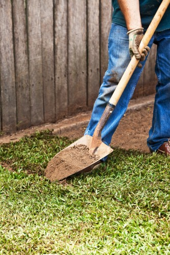 Don's Tips: Old Husbands' Tales # 3 – Topdressing Lawns