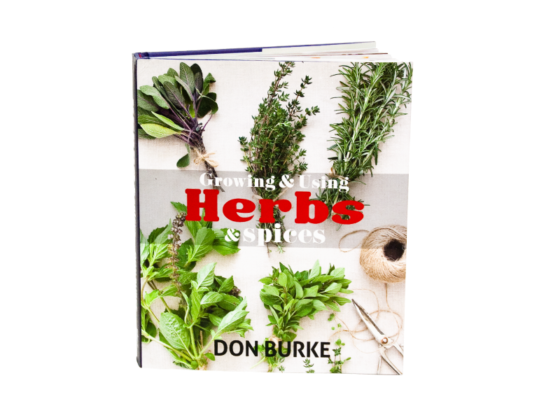 Herbs-&-Spices
