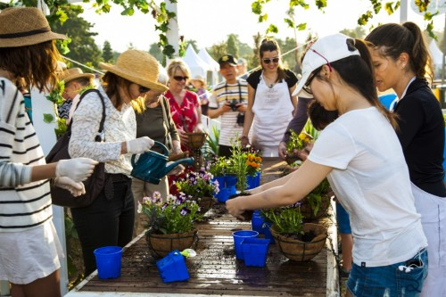 Don's Tips:Australian Garden Show