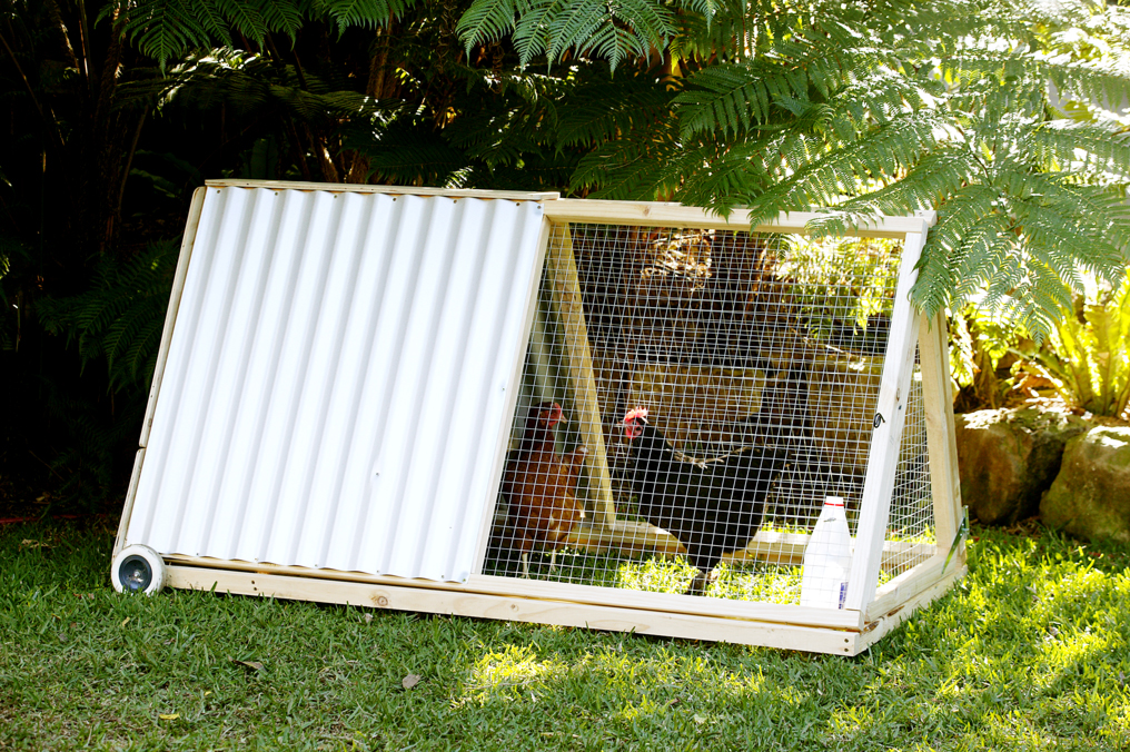 Chicken Coops for Small Spaces - Burke's Backyard