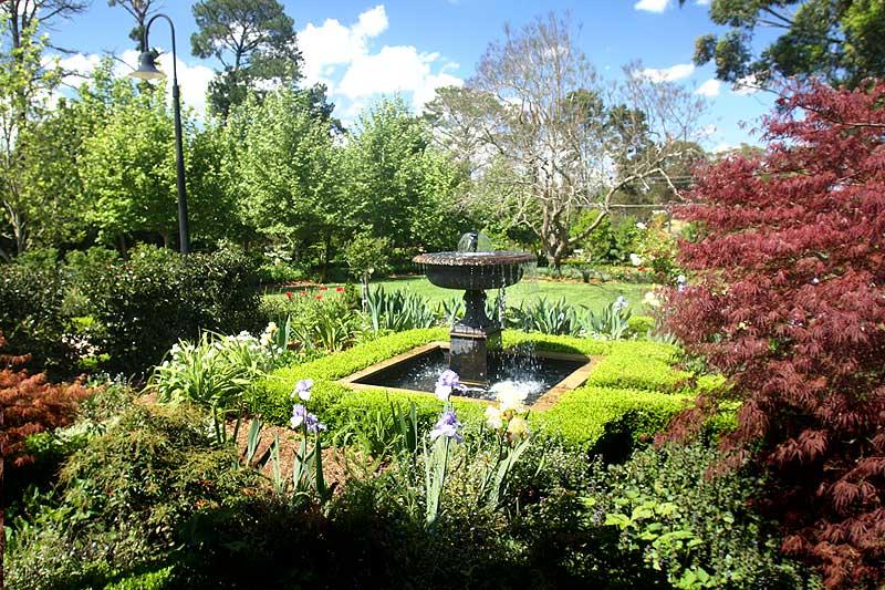 galston open gardens weekend