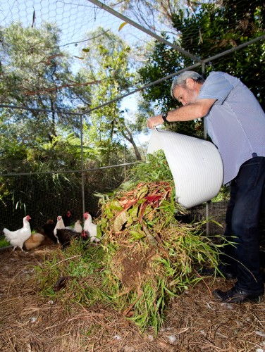 Chook Composters