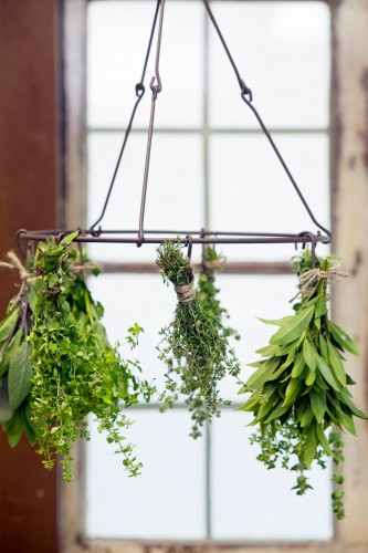 Don's Tips: Drying Herbs