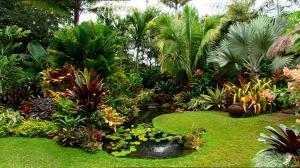 Dennis Hundscheidt S Garden Burke S Backyard