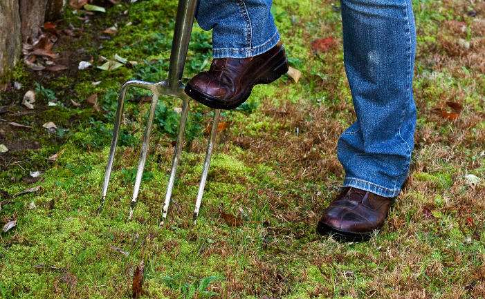 how to prepare for new lawn