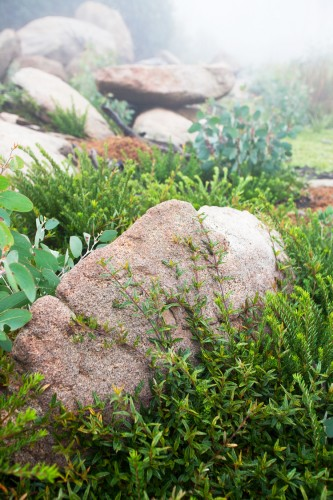 Don's Tips: Rocks In The Garden