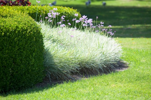 Don's Tips: Lawn Edges
