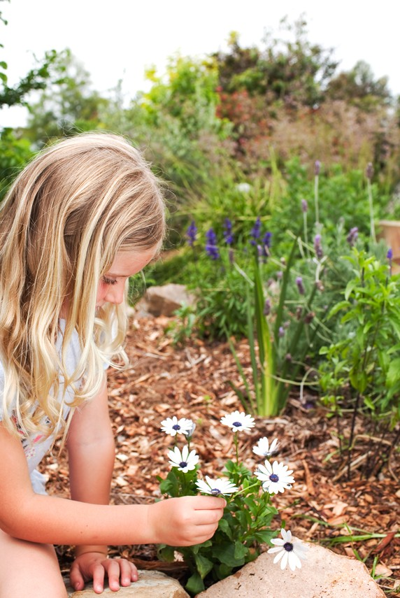 Don's Tips: Kids Gardens