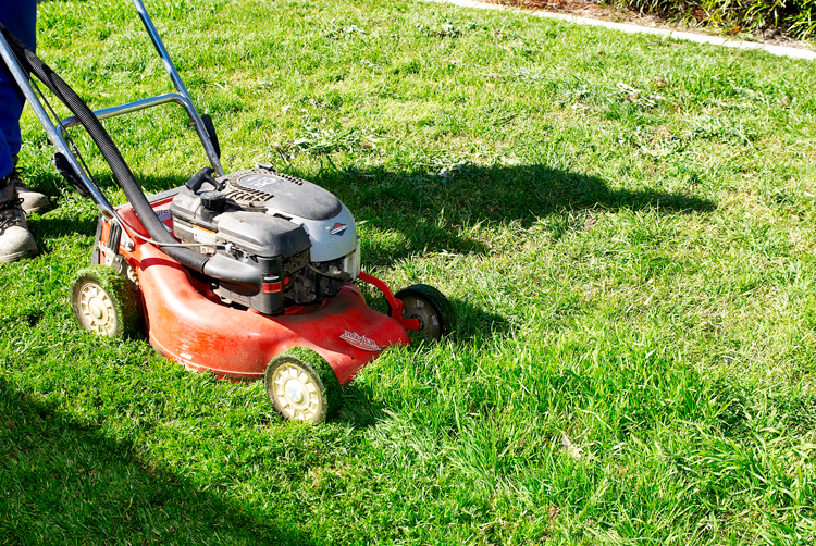 Don's Tips: Putting The Mower To Bed For Winter