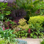 Don's Tips: Grouping Plants